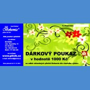 Gift voucher in amount of EUR 32 Gift vouchers